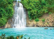 "Фотообои 8 листов ""Тропический водопад Х5""Люкс ТП (194*272)"