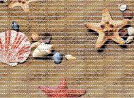 FV45 Дорожка из вспен.ПВХ фотопечать () 0.65х15м